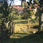 Villa Michelon Photo