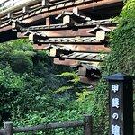 Saru Bridge Φωτογραφία