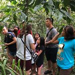 Foto de Tarsier Conservation Area