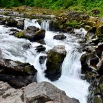Moulton Falls Regional Park照片
