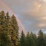 Rainbow over the park.