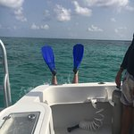 Foto de Cayman Turtle Divers