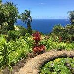 Garden of Eden Arboretum & Botanical Garden照片