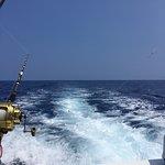 Camelot Sport Fishing照片