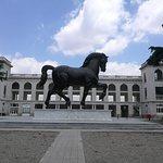 Foto di Cavallo di Leonardo da Vinci