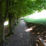 path to walled garden