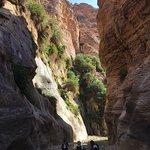 Stunning Wadi Hasa