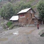 Guraz houses