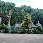 На столбах гнезда аистов.Парк Оранжри. Страсбург.