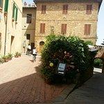 Bild från Trattoria Latte di Luna