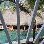 Overlooking the pool bar