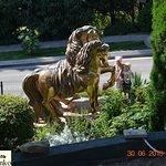 Золотые кони