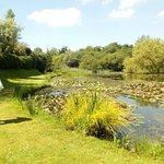 Foto de Bennetts Water Gardens