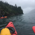 The view from my kayak