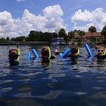Snorkeling to see Manatee