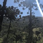 Bilde fra Pedra da Macela