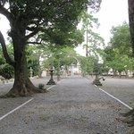 焼津神社の写真