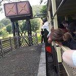 Vale of Rheidol Railwayの写真