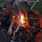 Dwellingup Forest Lodge照片