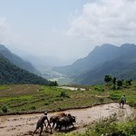 Rural mountain life and culture -trekking in summer season in Nepal offers you eye a awesome wit