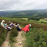 Picnic lunch in Wicklow