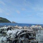 Kinnagoe Bay照片