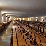 Chateau Mouton Rothschild照片