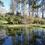 Tregrehan Gardenの写真