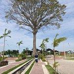 صورة فوتوغرافية لـ Parque Estadual do Utinga
