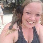 Monkey Beach!