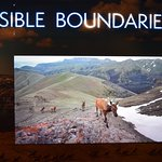 """Invisible Boundaries"" multi-media presentation exploring Yellowstone great animal migrations"