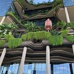 Bilde fra PARKROYAL COLLECTION Pickering, Singapore