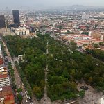 Torre Latino照片