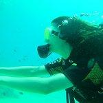 Photo of Ege Barakuda Kas Diving Center