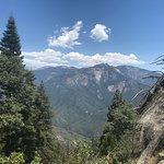 Sequoia National Park照片