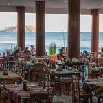 Photo of Mr. Lionso Playa Bruja