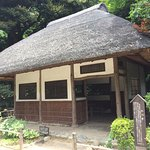 Photo of Koishikawa Korakuen Garden