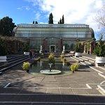 Photo of Winter Garden Auckland Domain