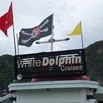 White Dolphin Cruises照片
