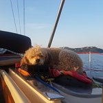 Sail the Day - Skiathos Sailing Trips fényképe