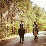 Horse Stables Dragalevtsi