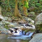 Stoney Creek has many small rapids