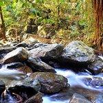 Stoney Creek has many rapids