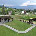 Summerhill Pyramid Winery照片