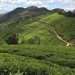 Photo of Ceylon Escapes