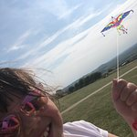 Let's go fly a kite...!