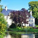 Le Château, ses Douves et ses Cygnes en été