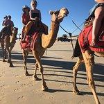 Φωτογραφία: Red Sun Camels