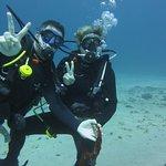 Baliberty私人潜水之旅照片
