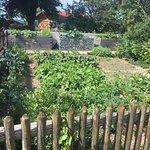Bauerngarten der Gastgeberfamilie